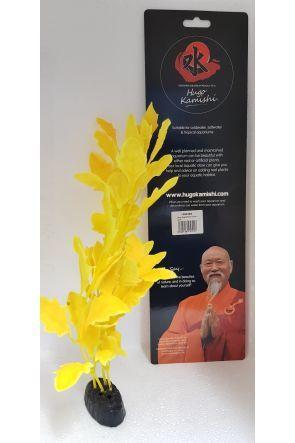 Hugo Kamishi Yellow Hygro[philla 40cm (1360366)
