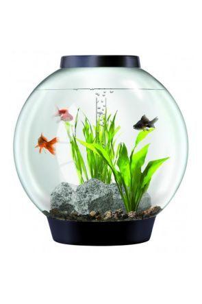 biOrb Classic 30 Litre Aquarium (Black) with MCR