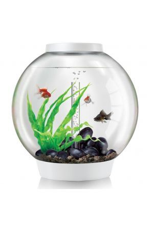 biOrb Classic 60 Aquarium (White) with MCR