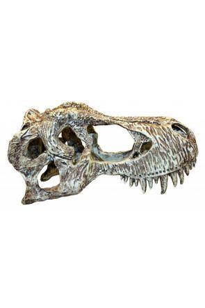 Komodo T Rex Skull (Small)