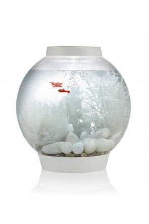 biOrb Baby Aquarium