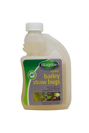 Blagdon Barley Straw Bugs