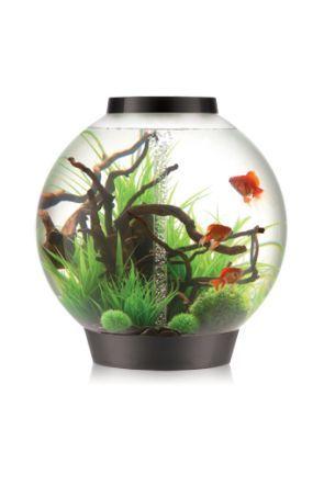 biOrb 105 Aquarium with LED Light