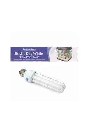 Interpet Compact 15w Daylight (ES)
