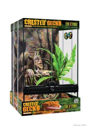Exo Terra Crested Gecko Kit Small (PT3778)