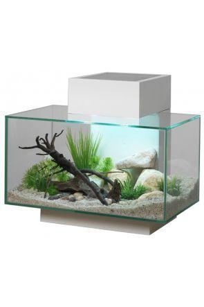 Fluval Edge Aquarium 23 litre - Gloss White