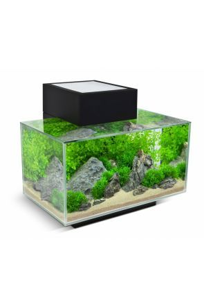 Fluval Edge Aquarium 23 litre - Gloss Black