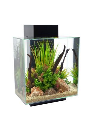 Fluval Edge Aquarium 46 litre - Gloss Black