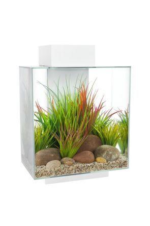 Fluval Edge Aquarium 46 litre - Gloss White