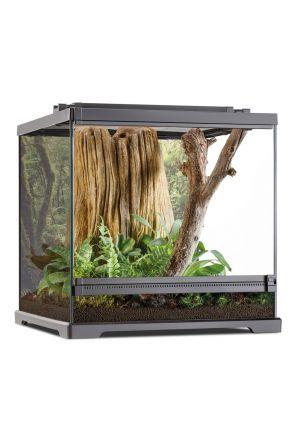Exo Terra Dartfrog Terrarium