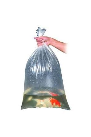 10 x Fish Bags