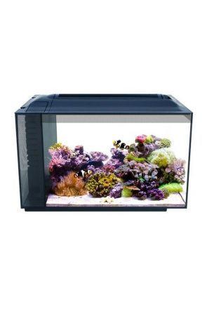 Fluval Evo Aquarium Kit 52l