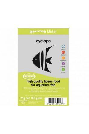 Gamma Cyclops