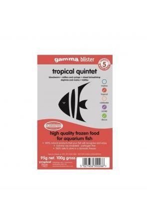 Gamma Tropical Quintet
