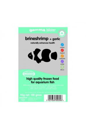 Brine Shrimp with Garlic