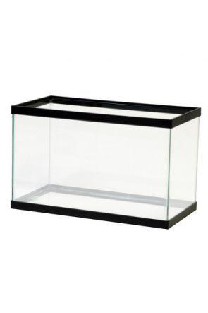 """Glass Aquarium 18"""" x 10"""" x 10"""""""