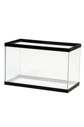 "Glass Aquarium 24"" X 18"" X 12"""