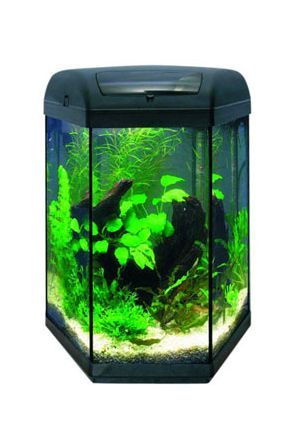Aquael Hex 60 Tropical Aquarium (60 litres)