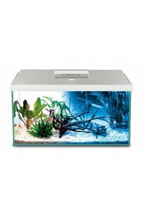 Aquael Leddy 75 Tropical Aquarium