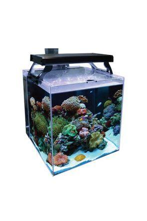 Aqua One Nano Reef 35