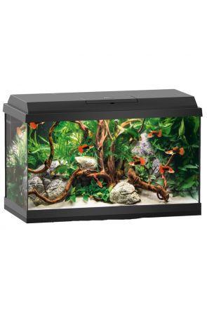 Juwel Primo 60 Aquarium - Black