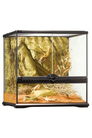 Exo Terra Glass Terrarium Small/Wide - 45cm x 45cm x 45cm (PT2605)