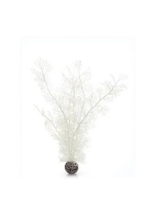 Reef One White Sea Fan Plant (Large)