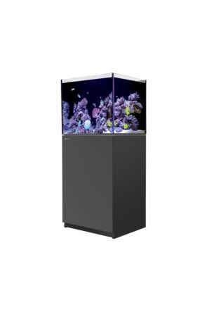 Red Sea Reefer 170 Black