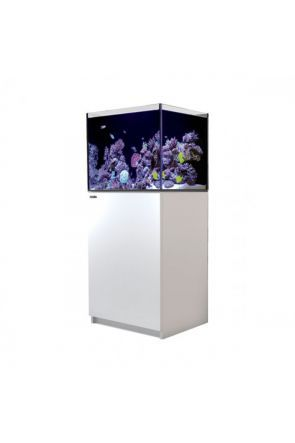 Red Sea Reefer 170 White