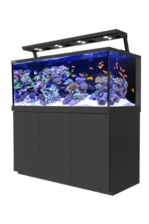 Red Sea Max S-650 Aquarium Black