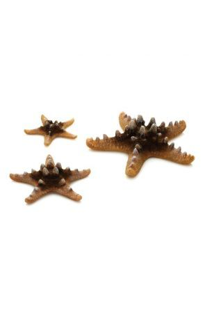 BiOrb Sea Stars (Natural)