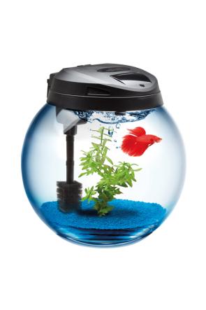 Aquael Sphere 45 Aquarium