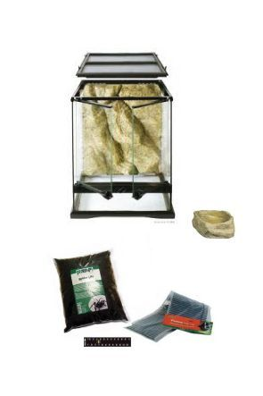 20cm x 20cm x 30cm Glass Vivarium & Kit for Spiders