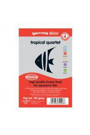 Gamma Tropical Quintet