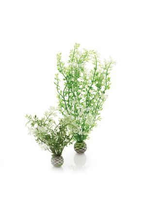 BiOrb Winter Flowers Plants
